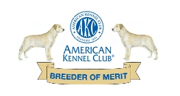 AKC Breeder of Merit Award